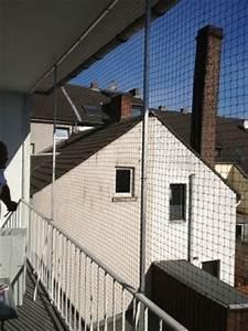katzennetz nrw reimers in monchengladbach rheydt mitte With katzennetz balkon mit home affaire garden