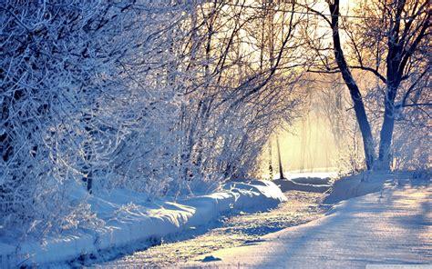Cool Winter Background by Winter Wallpaper Desktop Background Nature Hd Wallpaper