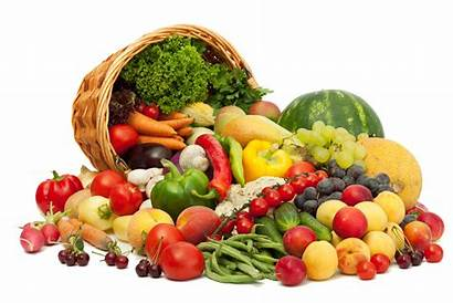 Obesity Health Fibre Problem Vegetables Fruits Example