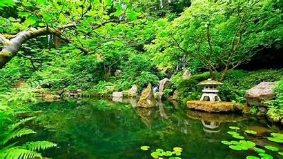 Zen Nature Garden Relaxing Sounds Sleep Deep