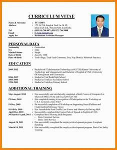 Cv Template Job Application
