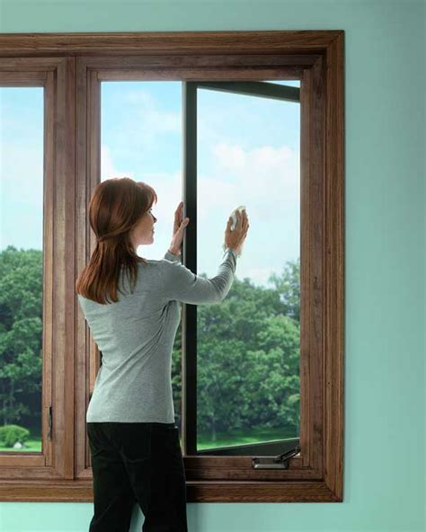 window wisdom cleaning  caring  windows