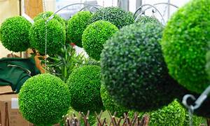 5 Eco Friendly Gardening Ideas That Will Have You Seeing Green