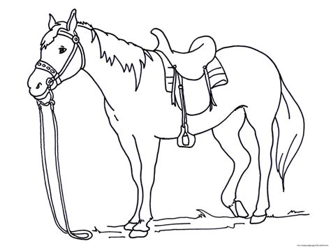 horse coloring pages  sun flower pages
