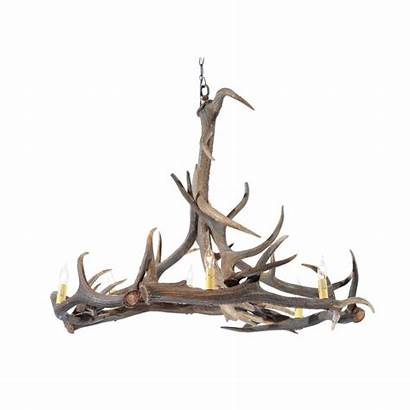 Deer Shed Antler Fallow Chandelier Naturally English
