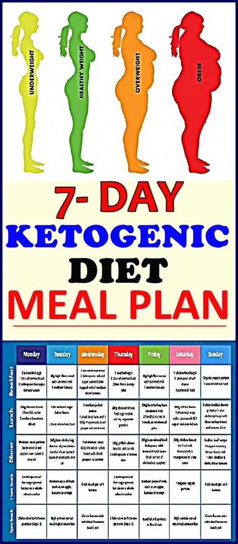 ketogenic diet plan  beginners  day keto meal plan