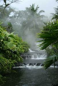 Costa Rica Tour For Nature Lovers  U0026 Adventure Seekers