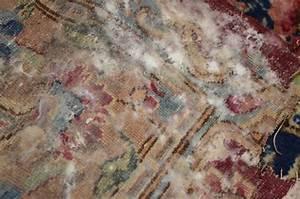 Wände Trocknen Nach Wasserschaden : was tun gegen wassersch den bei orientteppichen ~ Michelbontemps.com Haus und Dekorationen
