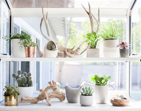 Window Sill Plant Holder by Use Your Windowsills For More Storage Usable Surface