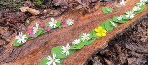 Marc Pouyet Land Art Nature Art