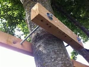 Comment Construire Une Cabane à écureuil : construire une cabane ii dans les arbres toysfab ~ Melissatoandfro.com Idées de Décoration
