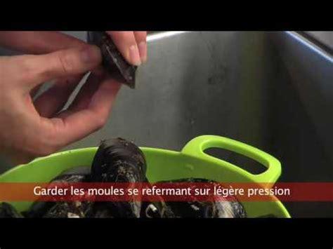 comment cuisiner les moules cuisiner futé nettoyer les moules