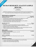 Human Resources Generalist Resume Templates Resume Template Builder Human Resources Human Resources Modern HR Generalist Resume Examples Resume Downloads Human Resources Generalist CoverletterThis Ppt File Includes Useful
