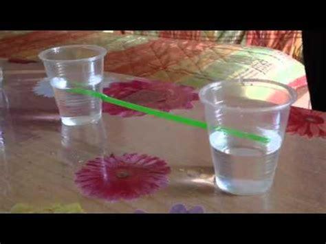 i vasi comunicanti di fisica sull esperimento dei vasi comunicanti