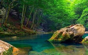 Nature Mountain River Green Trees Green Wallpaper Hd ...