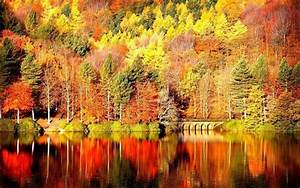 Fall Landscape Wallpapers - Wallpaper Cave