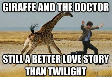 Giraffe Spider Meme - giraffe meme giraffe and the doctor still a better love story picsmine