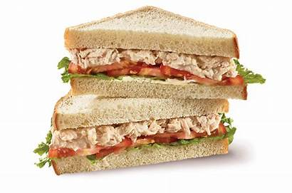 Sandwich Background Tuna Grilled Salad Selection Clipart