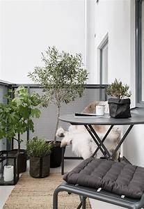 balkon modern pflanzen baum der garten auf dem balkon With balkon ideen modern