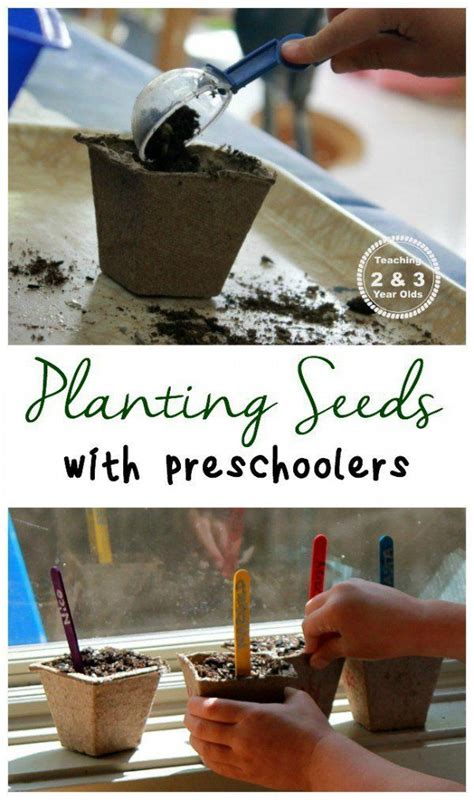 228 best images about gardening ideas on 943 | c4fcb0ba3a078ac15aded87692fe8c75