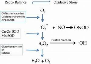 Schematic Oxidation