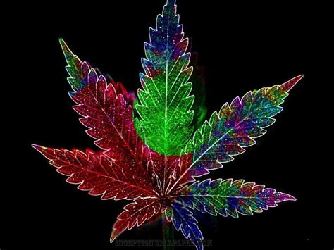 Marijuana Backgrounds Marijuana Wallpapers Wallpaper Cave