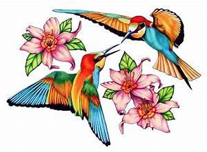 Clip Art Hummingbird - Cliparts.co