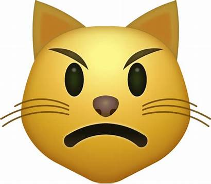 Emoji Angry Cat Iphone Ios Emojis Faces