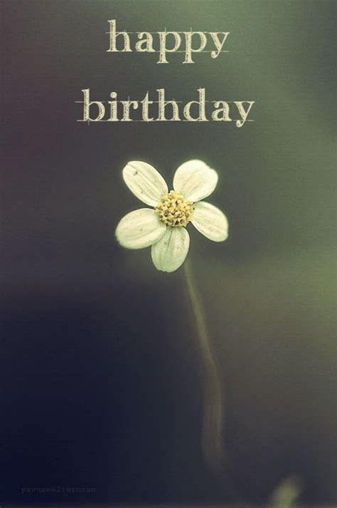 unique happy birthday wishes  send     love