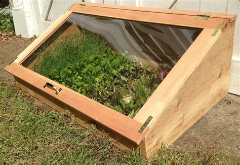 cold frames for gardening 12 crops to grow in the winter how to keep them warm