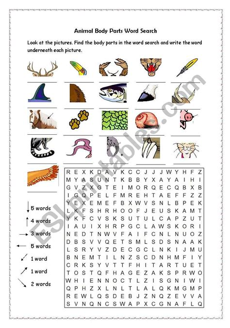 animal parts word search esl worksheet by jennyber