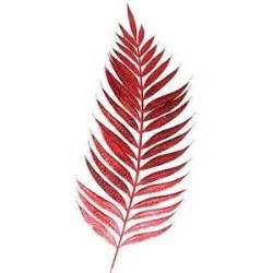 red fern grows tattoo inspiration pinterest