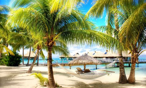 High Definition Tropical Wallpapers 63 Images