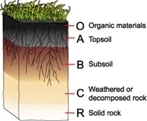 Soil Formation Vista Heights Grade Science