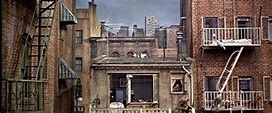 Rear Window Movie Review & Film Summary (1954) | Roger Ebert