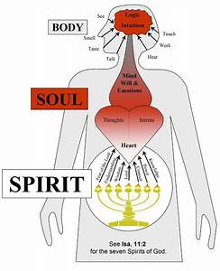 Spirit  Soul  Body Alignment  Isaiah 11 2