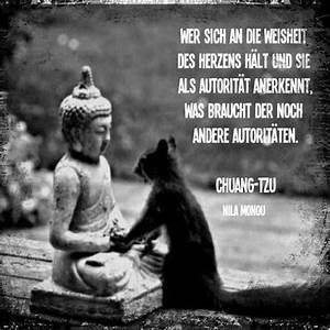 Buddha Sprüche Bilder : 34 besten buddhistische zitate bilder auf pinterest buddhistische weisheiten dalai lama und ~ Orissabook.com Haus und Dekorationen