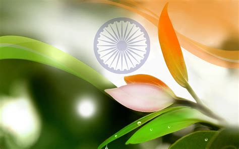 independence day whatsapp dp images wallpapers