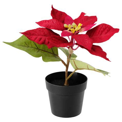 pot a fleur ikea fejka artificial potted plant poinsettia 9 cm ikea