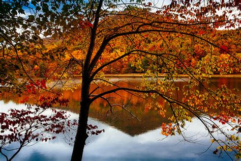 fall colors in virginia best places to see fall colors in the blue ridge mountains