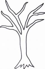 Tree Coloring Drawing Bare Simple Easy Printable Pages Template Trunk Adults Winter Outline Templates Leaf sketch template