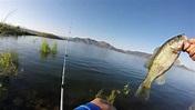 Shore Fishing at Diamond Valley Lake - YouTube