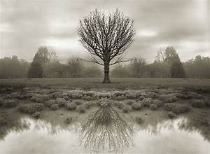 art of the beautiful-grotesque: The Art of Alfred Stieglitz