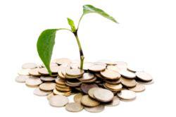 banco di napoli investimenti banco di napoli