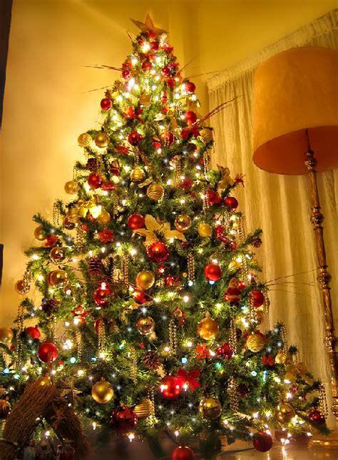 sebastian s christmas tree from buenos aires argentina