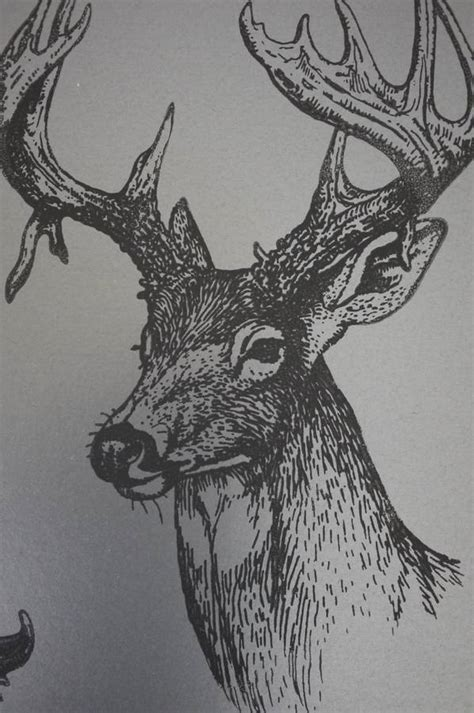 stags head wallpaper  sharon jane notonthehighstreetcom