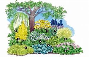 Gartengestaltung Unter Bäumen : geh lzunterpflanzung garten ~ Yasmunasinghe.com Haus und Dekorationen