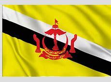 drapeaux adhésifs de Asia