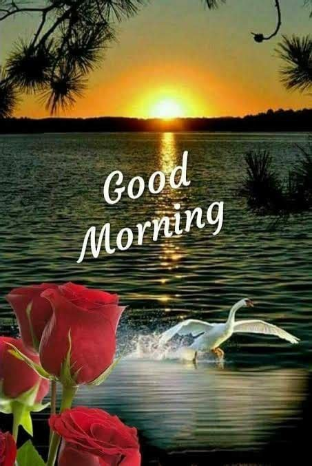 good morning  hd  hindipro