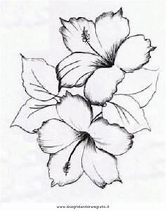 Oltre 25 fantastiche idee su Disegni di fiori su Pinterest Schizzi di fiori, Fiore geometrico
